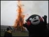 littlekingtrashmouth: (bear burn)