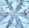 jennlk: (snowflake)