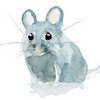 mouse_uk: (grey mouse)