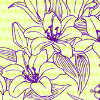 adanceforyi: drawing of two flowers on a yellowish background (Default)
