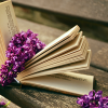 lesbianromance: An open book with lilacs (pic#11442291)