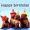 dodger_sister: (happy birthday)