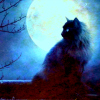 hughville: (Cat and moon)