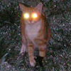 tinhuviel: (Demon Smidge)