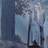 kenaz: (Elves: In the Mist)