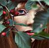 poisoned_flower: (Berries)