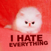 aderam: (I Hate Everything)