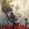 twinpeaks2017: (pic#11455308)