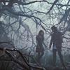 meganbmoore: (swath: dark forest)