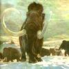 fbhjr: (Mammoth)