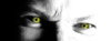 nicholas_lucien: Nick Vamped Out - Eyes (Nick Eyes)