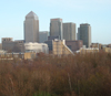 juliet: The towers at Canary Wharf seen from Staves Hill in Bermondsey (london trees)