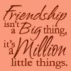 soundofsunlight: Text: Friendship isn't a big thing, it's a million little things. (friendship)