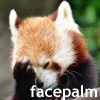 umadoshi: (facepalm - red panda)