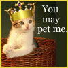 sabriel: Cat King - You may pet me (Cat King - You may pet me)
