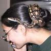 amazonv: (Snake)