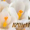 kelliem: Spring crocuses (spring)