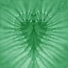 jenny_evergreen: (Green Heart)