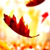 indiana_j: (Falling autumn)