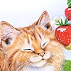 primwood: Cat Smiling with Strawberry (Elijah Heart)