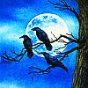 ravenskyewalker: (Default)