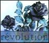 ciaan: revolution (Default)