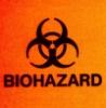 coolohoh: Biohazard (Biohazard)