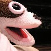 misssara11: (Sock Puppet)