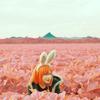 mybeautifulwars: (pink bunny)