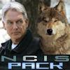 triskellion: (NCIS Pack)