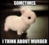 "bonesofbirdwings: Cute bunny with text: ""Sometimes I think about murder"" (Default)"