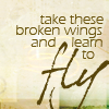 wendelah1: quote: take these broken wings and fly away (take these broken wings)