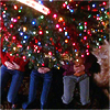 mortalcity: Meredith, Izzie, George and Doc the boppy lying under a Christmas tree. (GA | lights will guide you home)