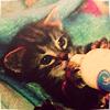 ilaysio: (kitty: food time)