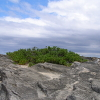 phoenixfalls: Stone & Sky (Default)