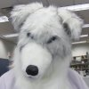argos: Fursuit by myself. :-D (at work)