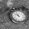 shaddyr: pocket watch (pocket_watch)