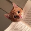 chantress: (Cat and Book)