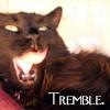lizzibabe: (Tremble)