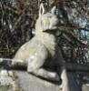 iddewes: (animal wall)