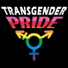 yay_for_queers: (Transgender pride)