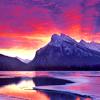 lesli: (Purple landscape)