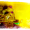 dani_meows: (star trek: yellow alien)