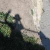moodyduck: (shadow)