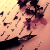 lithophiles: An ink dip pen lying on a piece of paper with some writing on it, with pink flower petals scattered across it. (sophie)