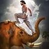 baranduin: (Bahubali elephant)