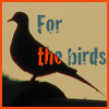 feng_shui_house: Pigeon silhouette text for the birds (Birds for the)