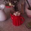 cicadahan: (table jungle)