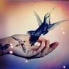 merrysheep: (hand ---> bird)