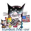 feng_shui_house: Cartoon me with cat teddy bear and US flag (Me Perfect)